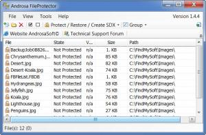 Enlarge Androsa  FileProtector Screenshot