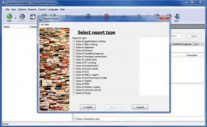 Enlarge LanAgent Screenshot