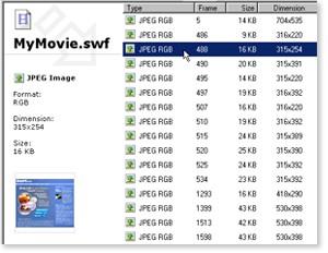 Enlarge SWF Extractor Screenshot