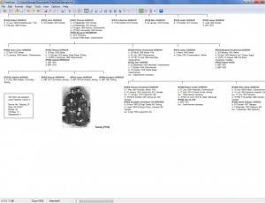 Enlarge TreeDraw Screenshot
