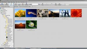 Enlarge FotoAlbum Screenshot