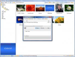 Enlarge WinTrezur Screenshot