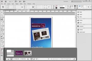 Enlarge Adobe InDesign Screenshot