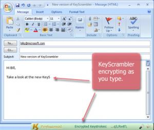 Enlarge KeyScrambler Professional Screenshot