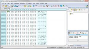 Enlarge Free Hex Editor Neo Screenshot