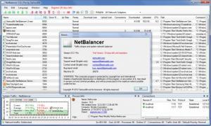 Enlarge NetBalancer Pro Screenshot