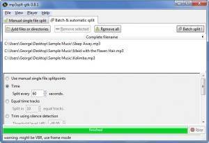 Enlarge Mp3Splt Screenshot