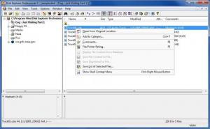 Enlarge Disk Explorer Professional Screenshot