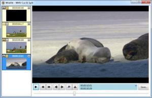 Enlarge WMV Cut & Split Screenshot
