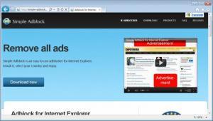 Enlarge Simple Adblock Screenshot